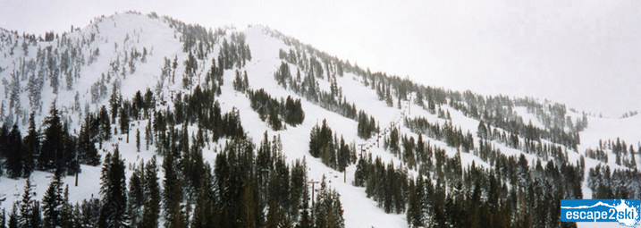 Mt Rose Ski Tahoe | Find Ski Resorts in Lake Tahoe | Escape2ski | Lake Tahoe Ski Areas |